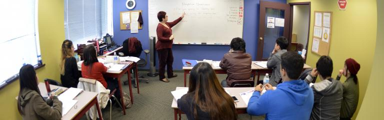 FPSE member teaching in a classroom